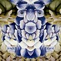 Blue Flower King by Susan Dorling