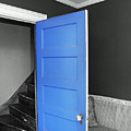 Blue by Frank Nicolato