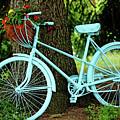 Blue Garden Bicycle by Debbie Oppermann