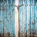 Blue Gate by Susie Weaver