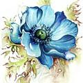 Blue Gem by Anna Ewa Miarczynska