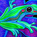 Blue Green Frog by Nick Gustafson