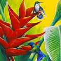 Blue-headed Hummingbirds And Heliconia by Christopher Cox