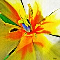 Blue Heart Of The Tulip by Sarah Loft