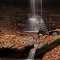 Blue Hen Falls And Cascade by TM Schultze