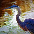 Blue Heron 2 by Donna Bentley