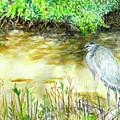 Blue Heron by Judy Riggenbach