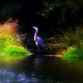 Blue Heron by Lori Seaman