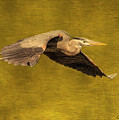 Blue Heron On Gold by CR  Courson