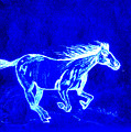 Blue Horse by Linda Powell