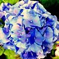 Blue Hues by Ed Weidman