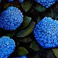 Blue Hydrangeas by Riccardo Maffioli