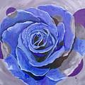 Blue Ice by Herschel Fall