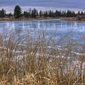 Blue Ice by Idaho Scenic Images Linda Lantzy