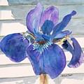 Blue Iris by LeAnne Sowa