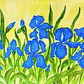 Blue Irises by Irina Afonskaya