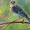 Blue Jay Painterly Beauty by Deborah Benoit