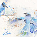 Blue Jays by Marsha Karle