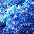 Blue Autumn  by ONDRIA-UNIqU3-Pics- Admin
