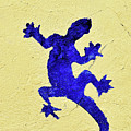 Blue Lizard by Sandy Taylor