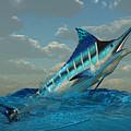 Blue Marlin Burst by Corey Ford