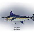 Blue Marlin by Ralph Martens