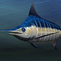 Blue Marlin by Walter Colvin