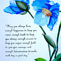 Blue Meconopsis Poppy by Karin  Dawn Kelshall- Best