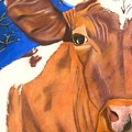 Blue Moo by Michelle Hayden-Marsan