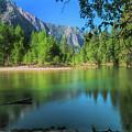Blue Mood In Yosemite by Bill Roberts