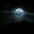 Blue Moon  by Saija Lehtonen