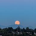 Blue Moon.2 by E Faithe Lester