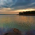 Blue Morning by Carolyn Fletcher