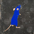 Blue Mouse by Stefanie Forck