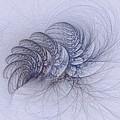 Blue Pagliai Ferns by Doug Morgan
