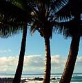 Blue Palms by Karen Wiles