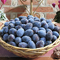 Blue Plums In A Basket by Mira Ostojic