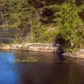 Blue Pond Marsh by JGracey Stinson
