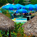Blue Pool Umbrellas by Cheryl Alkire