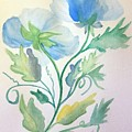 Blue Poppies by Maria Urso