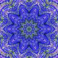 Blue Purple Lavender Floral Kaleidoscope Wall Art Print by Carol F Austin