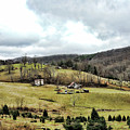 Blue Ridge Homestead by Grace Dillon