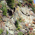 Blue Ridge Mountain by Shirley Roberson