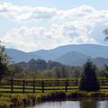 Blue Ridge Mountains by Carla Parris
