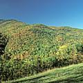 Blue Ridge Mountains by Doug Berry