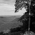 Blue Ridge Mountains - Virginia Bw 10 by Frank Romeo