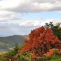Blue Ridge Parkway, Buena Vista Virginia 5 by Todd Hostetter