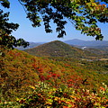 Blue Ridge Parkway by Gary Bydlo