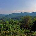 Blue Ridge Pkwy by Susan Lunsford