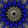 Blue by Robert Orinski